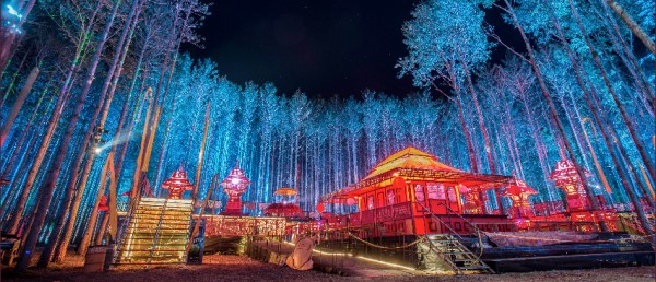 electricforest-festival