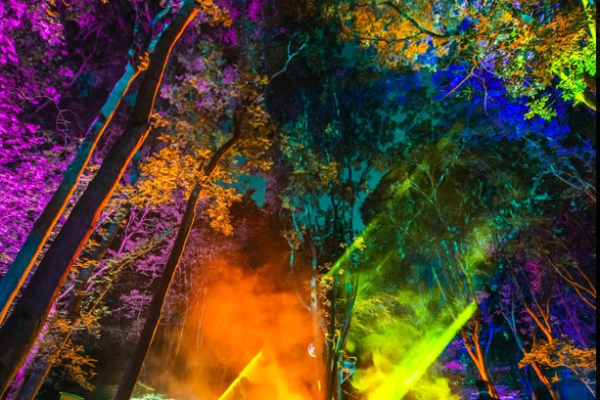 Noisily Festival of Music and Arts returns to Coney Woods in Leicestershire