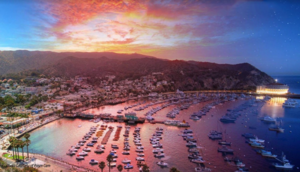 Groove Island 2019 on Catalina Island