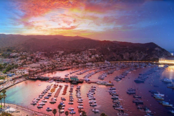Groove Island 2019 on Catalina Island
