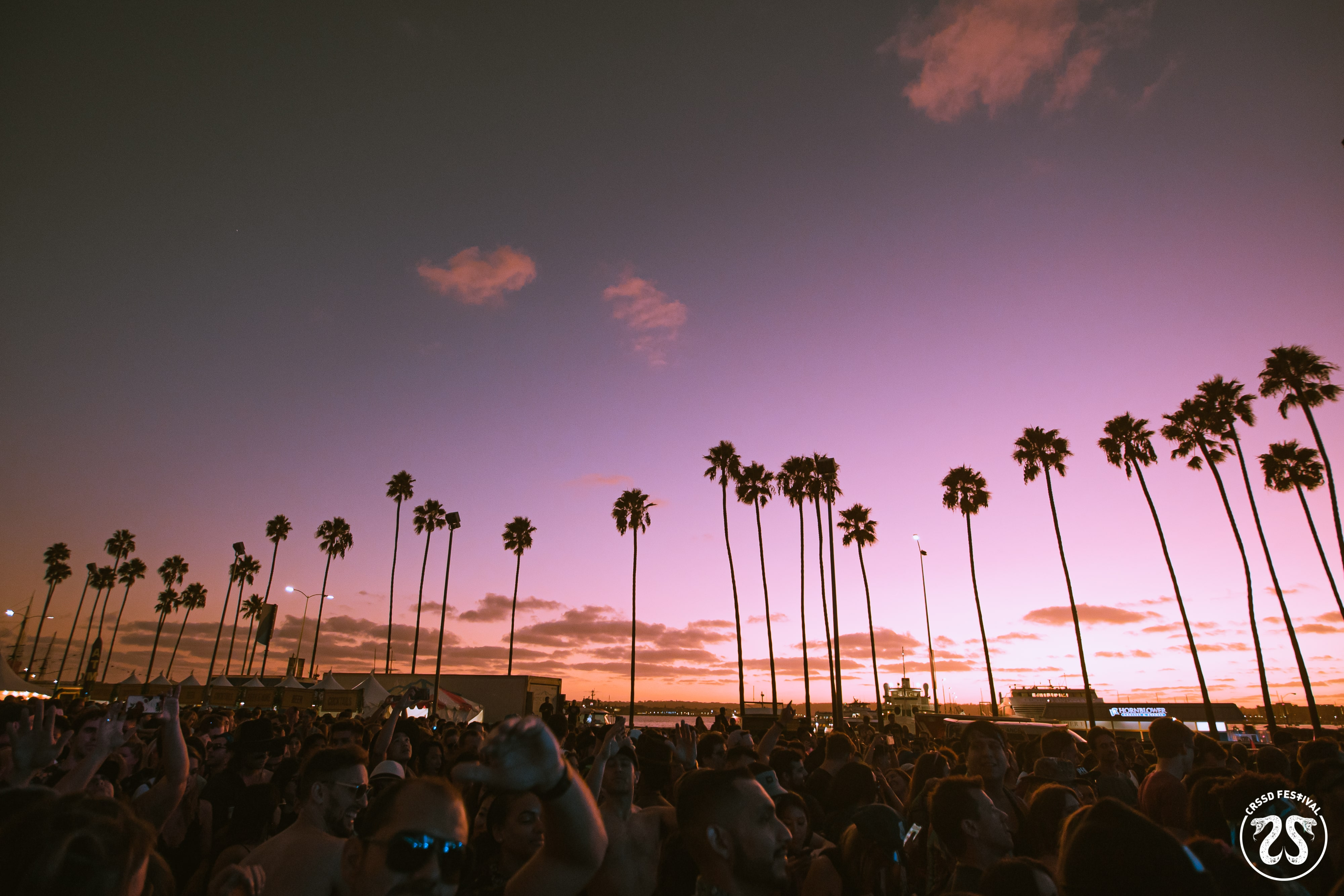 CRSSD Festival Fall 2019 Review