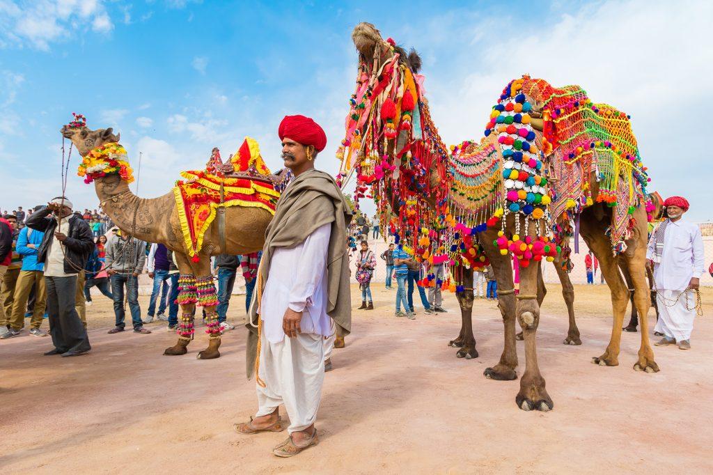 Most Famous Festivals of India Pushkar Camel Fair